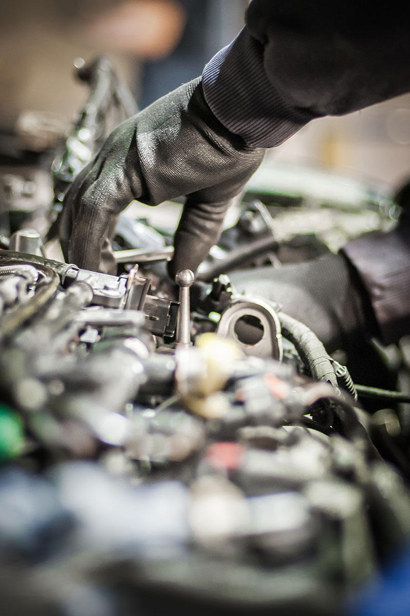 automotive services te awamutu